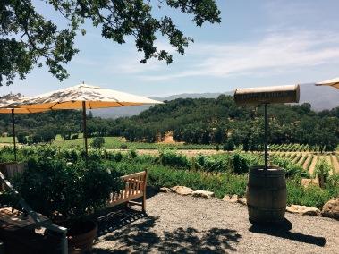 the view of Joseph Phelps Vineyards